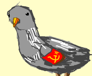 Communist pigeon