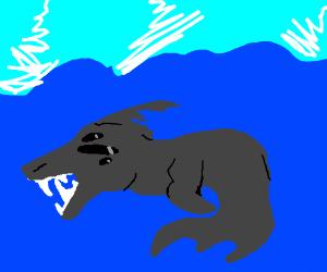 Cool Piranha - Drawception