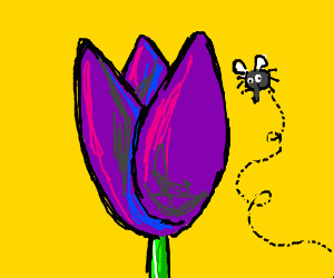 fly with noot nose & tulip