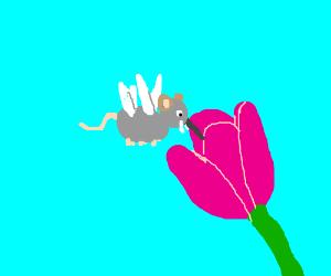 Mosquito-elephant-mouse investigates tulip
