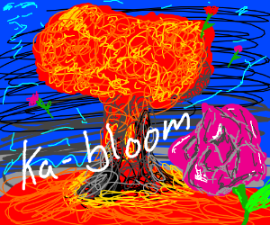 Ka-bloom flowers all over the place.