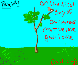 A partridge in a pear tree (cont song)