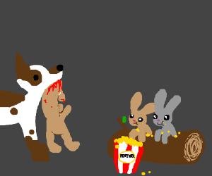 Dog kills long rabbit; other rabbits watch