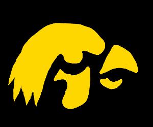 awesome yellow bird(eagle?)on black background