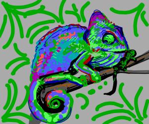 Chameleon eats small lizard