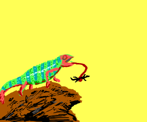 Amazing, fabulous chameleon eatin a little liz