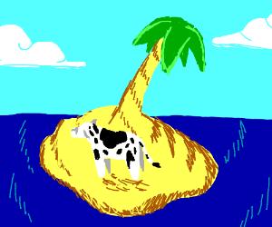 cow on island