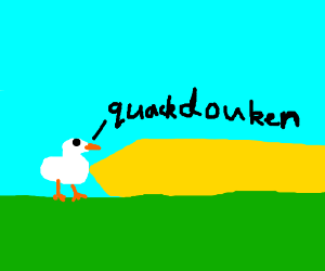 A duck learnt how to hadouken