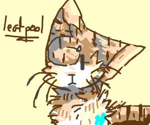 Leafpool from Warrior Cats - Drawception