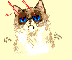 Grumpy cat shooting lasers from its eyes