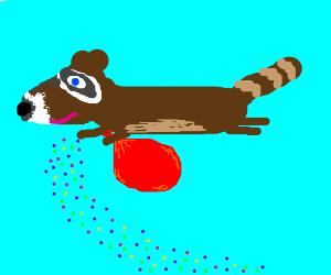 flying raccoon drops confetti