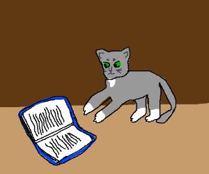 "Tom Cat ""reading"" a Book"