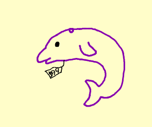 Purple dolphin for sale