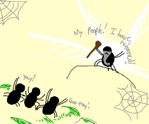 A spider returns to his people after isolation