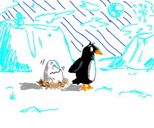 penguin guards hatching egg