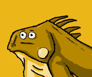 meh the iguana