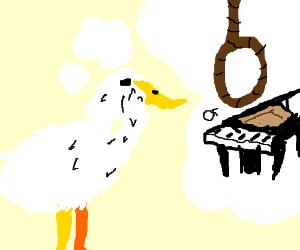 Duck contemplates susicide or piano
