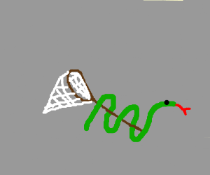 a snake wrapped around an empty net