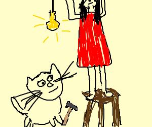 cat gets revenge on cat lady