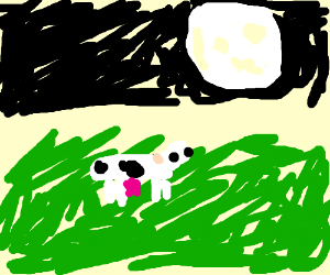 Moo at the Moooooooon