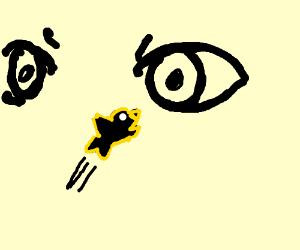 Black bird flies into man's right eye.