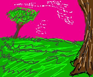 Scene in nature (PIO)