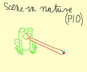 DRAW A FRICKEN SCENE IN NATURE, PIO