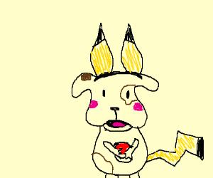 Dog cosplaying as a Pikachu