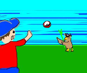 That's one Farfetch'd pokemon!