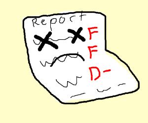 RIP report card