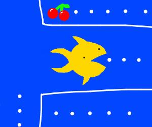 Pac-Fish