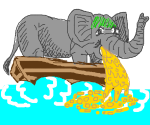 Elephant vomits on boat.