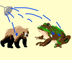 bear and frog lookin thing have shower