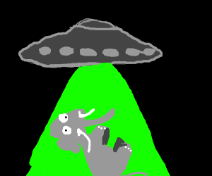 Elephant Abducted by aliens