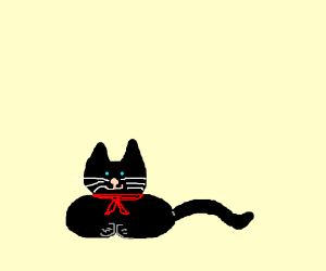 a black cat wearing a red bandanna