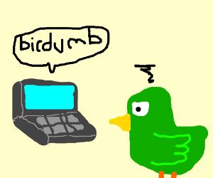 Computer insults bird's intelligence.
