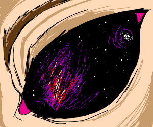 A vision of the universe