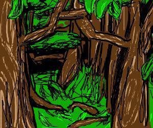 TREE HAVEN.