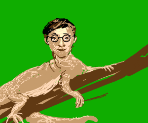 You're a Lizard, Harry
