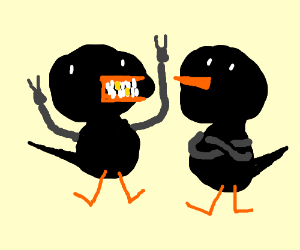 Sparrowboyz