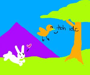 bunny loves bird. bird no like bunny