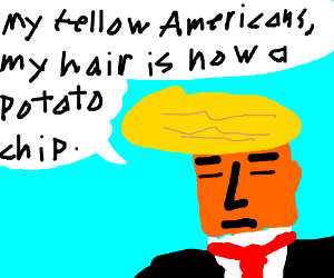 Trump's hair turned into a potato chip