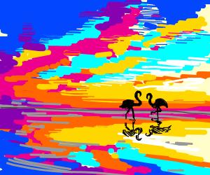 a sunset on flamingo beach