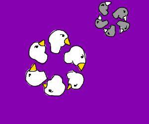 A circle of bird heads