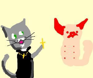 Priest cat performs exorsism