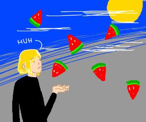 Its Raining Slices of Watermelon
