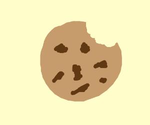 chocolate chip cookie (lolololololololololol)