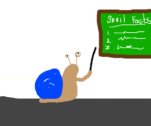 Snail... facts?