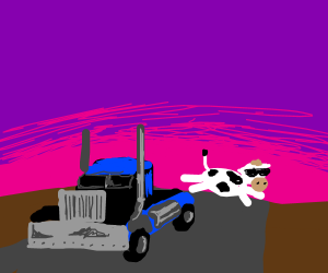 cow flies off semi on to highway