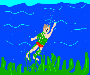 Boy tangled in seaweed while swimming